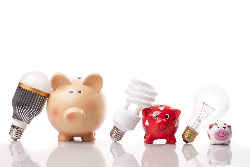 LED, CFL and incandescent lightbulbs positioned next to progressively larger ceramic piggybanks to signify the large savings on electricity costs associated with LED bulbs.