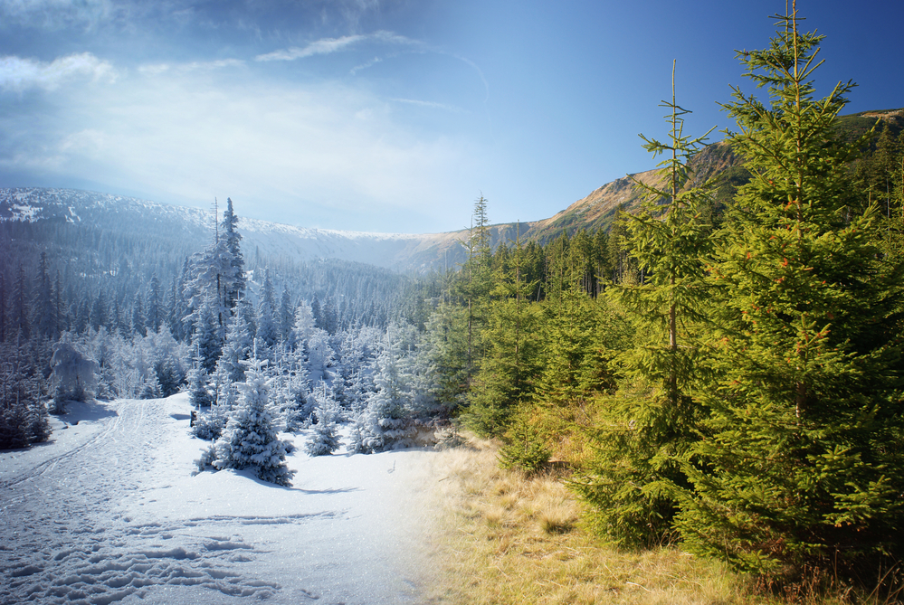 Mountain with a snowy trail and snow-covered trees in winter fading into the same tree-filled mountain scene in summer, representing the relationship between energy costs and climate.